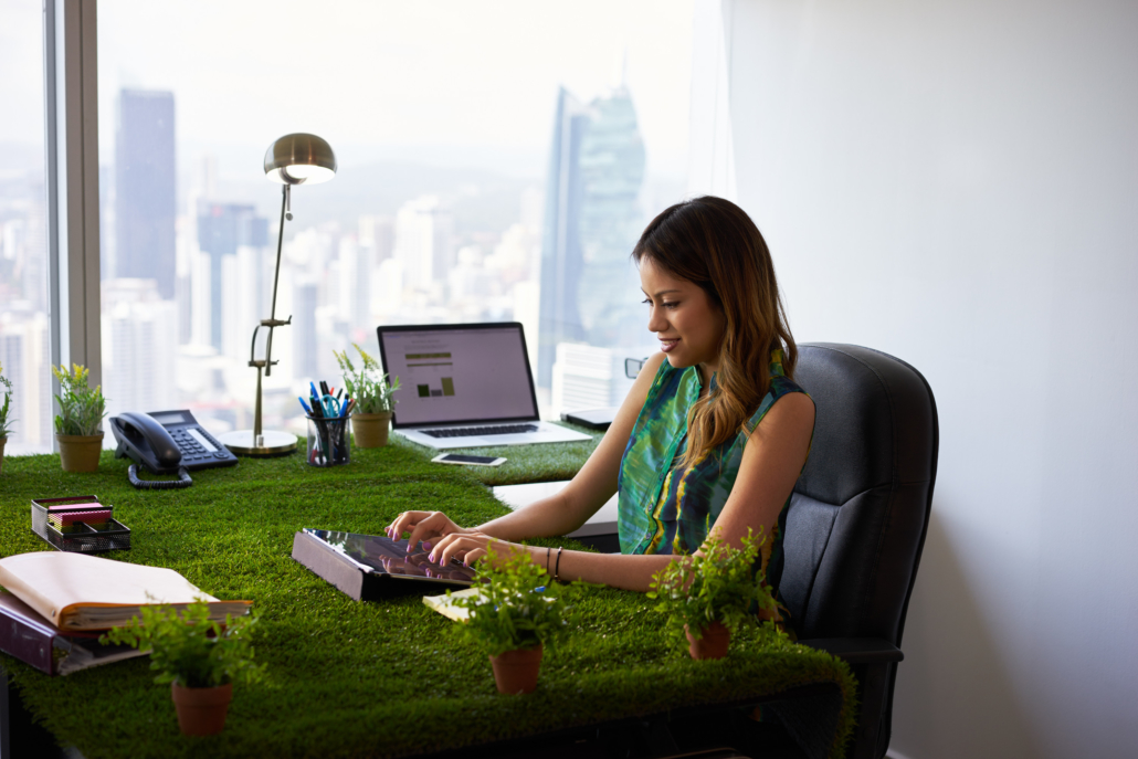 Best Plants To Increase Productivity And Promote Well Being In The Office