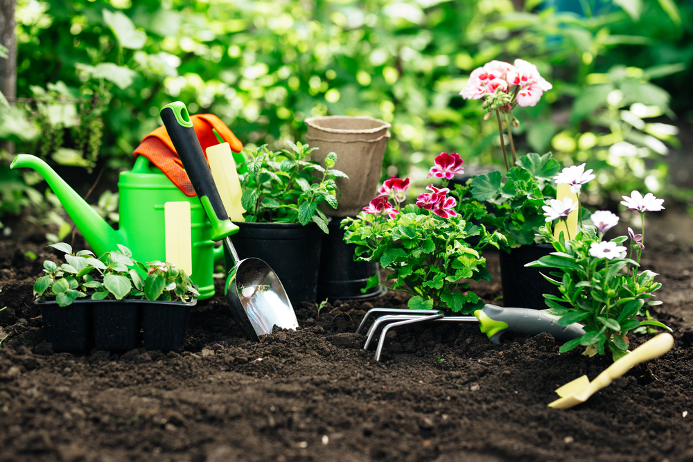 Spring Into Action: Lawn, Garden, and Landscaping